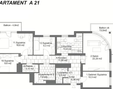 Rzut apartamentu