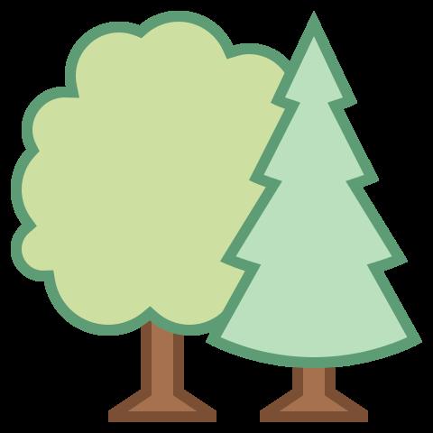 Liczne tereny zielone